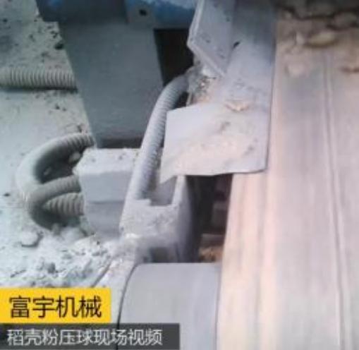 稻壳粉章鱼直播平台官网现场视频
